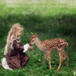 Выездной контактный зоопарк Бемби