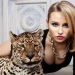 Леопард на фотосъемку