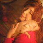 Живая свинья на новогодний корпоратив, фотозону